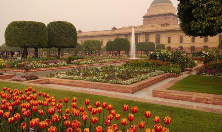 Visit of Mughal Garden, Rashtrapati Bhavan, New Delhi